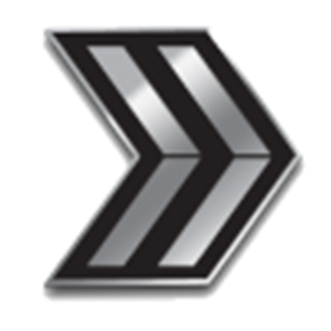 SFMC Enlisted Double Chevron Rank Pin