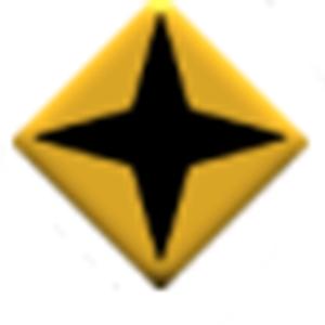 SFMC Enlisted Diamond with Star Burst pin